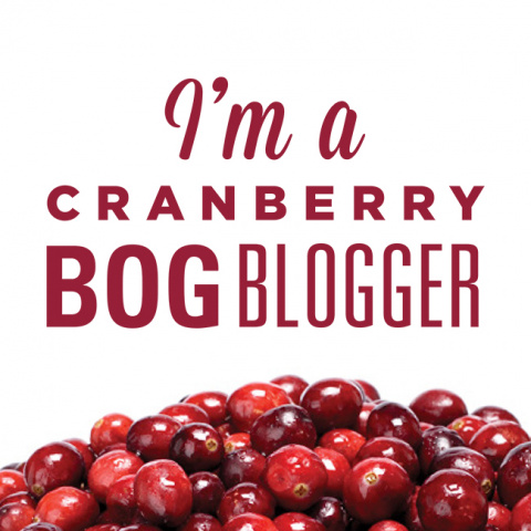 Bog Bloggers